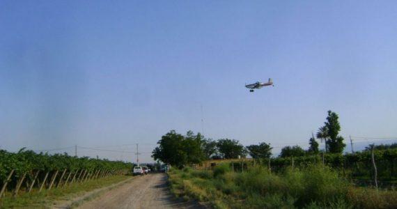 Tratamiento Aéreo Lobesia Botrana