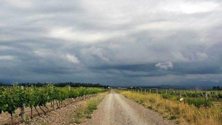 Pronóstico Valle de Uco