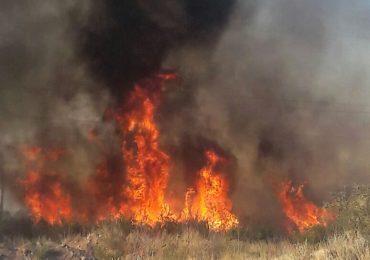 Incendio en Tupungato