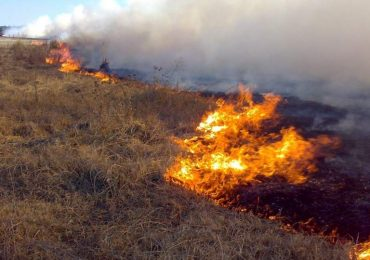 Incendio Mendoza
