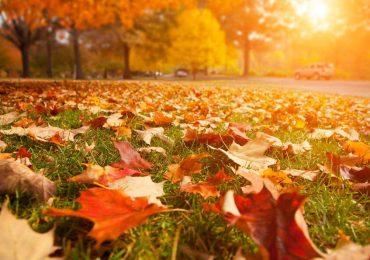 Hoy comienza el otoño en Argentina
