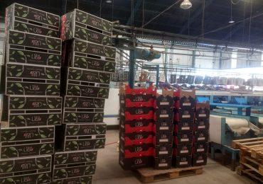 Se trata de Productos de Manantial de Vista Flores, quien vendió su primera carga a Europa