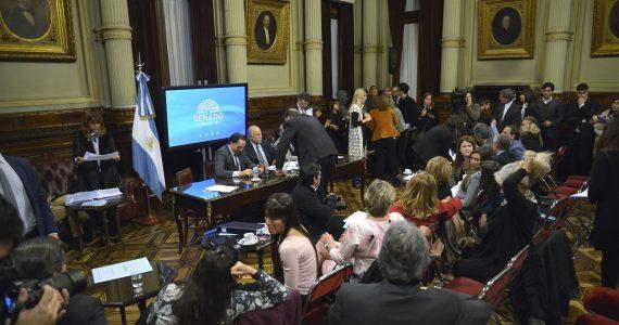 exposiciones en las comisiones del Senado