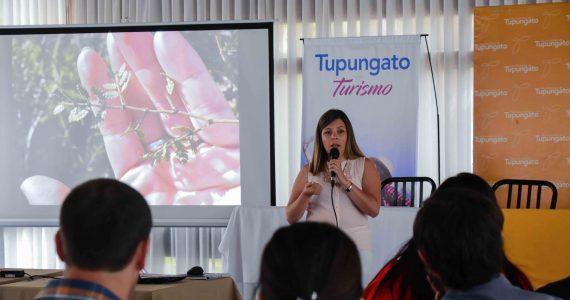 Nuevos servicios turísticos en Tgto